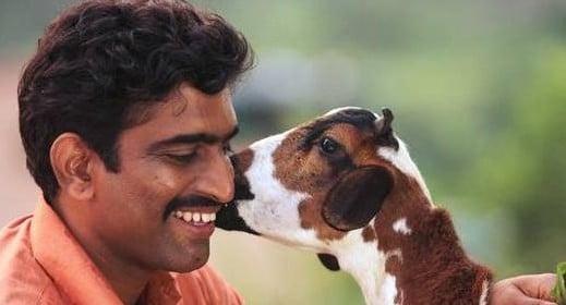 Idak The Goat Marathi Movie Download